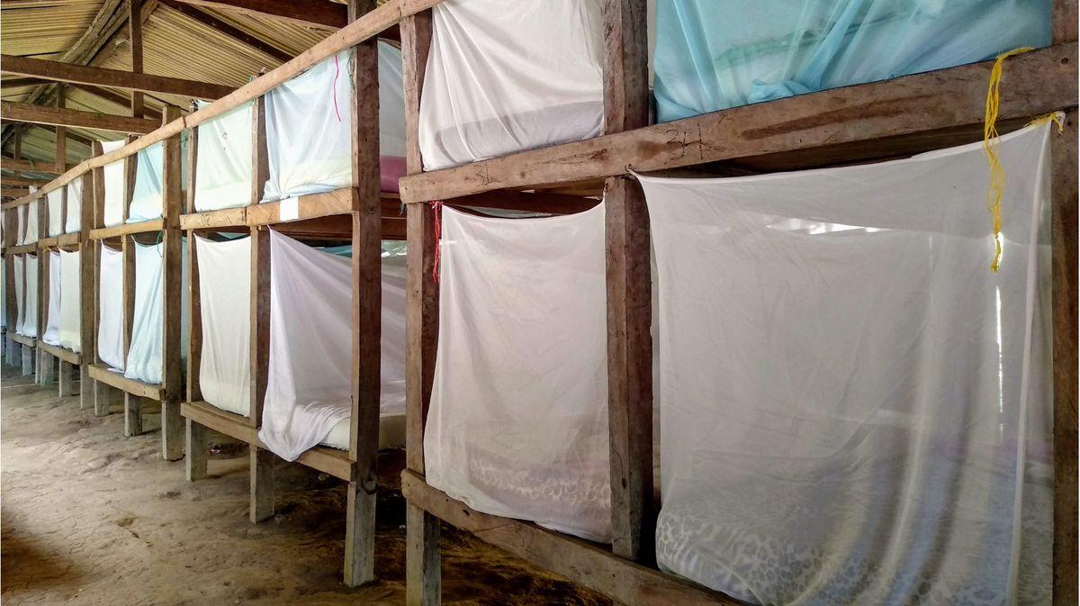 Camp Adan bunk beds