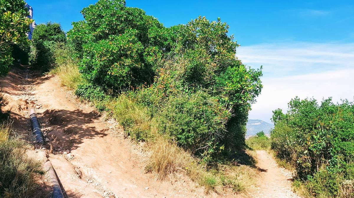 Curba de los tubos en Montserrat