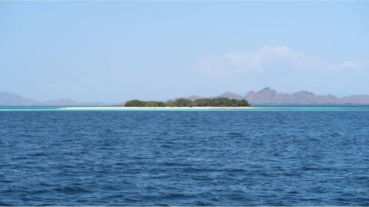 parque nacional komodo isla takamakassar 1