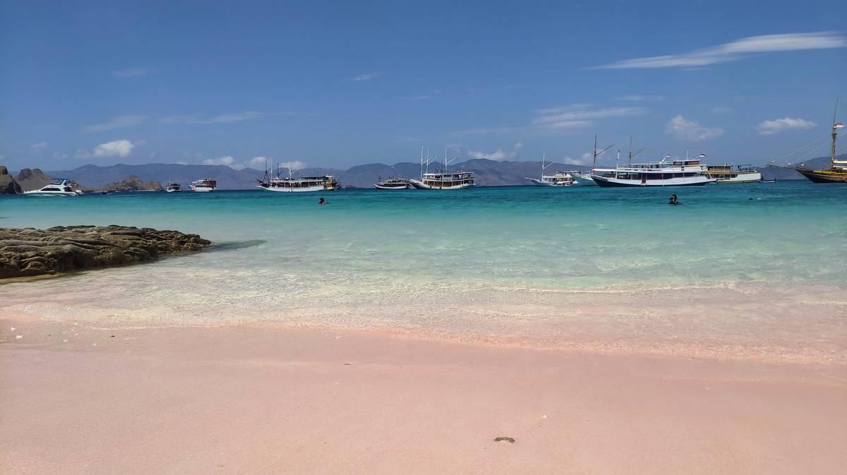 parque nacional komodo pink beach