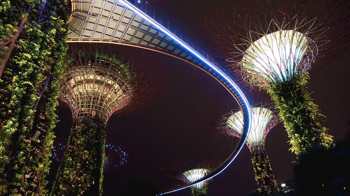 Singapur Gardens Rhapsody