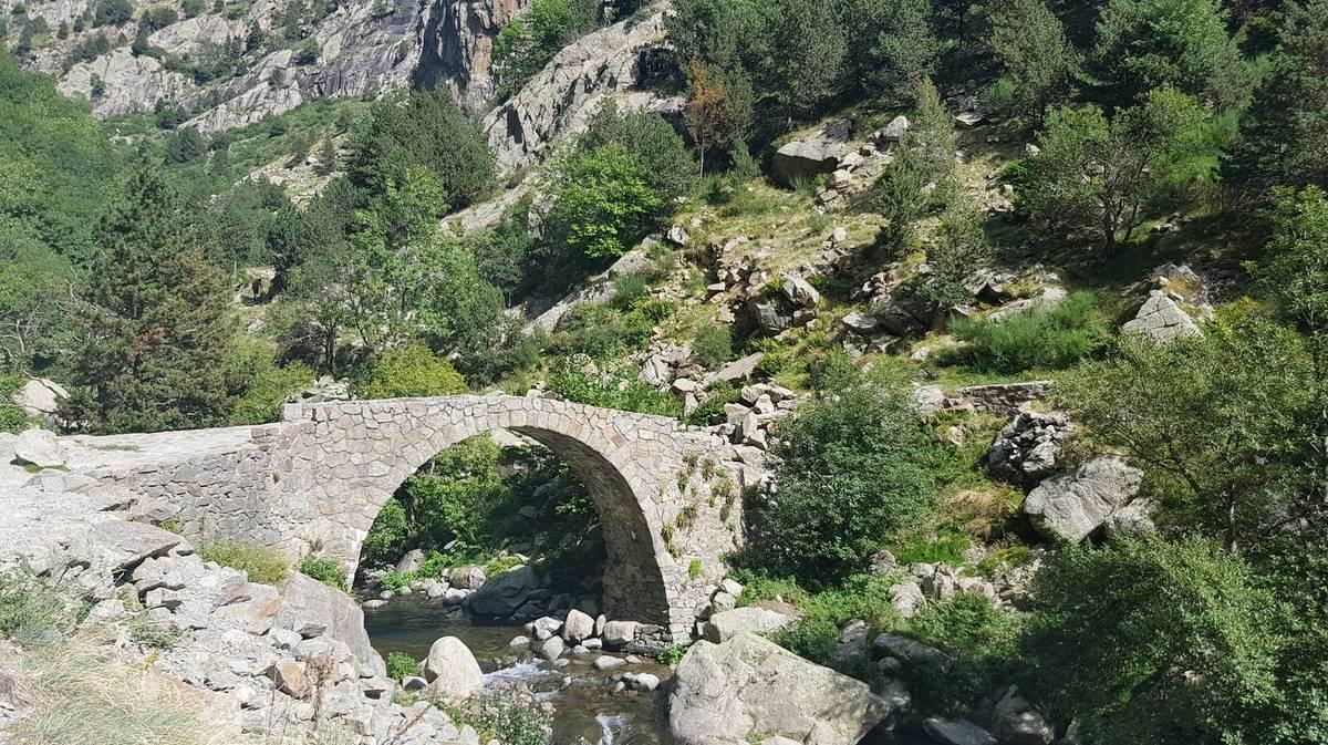 puente del cremal