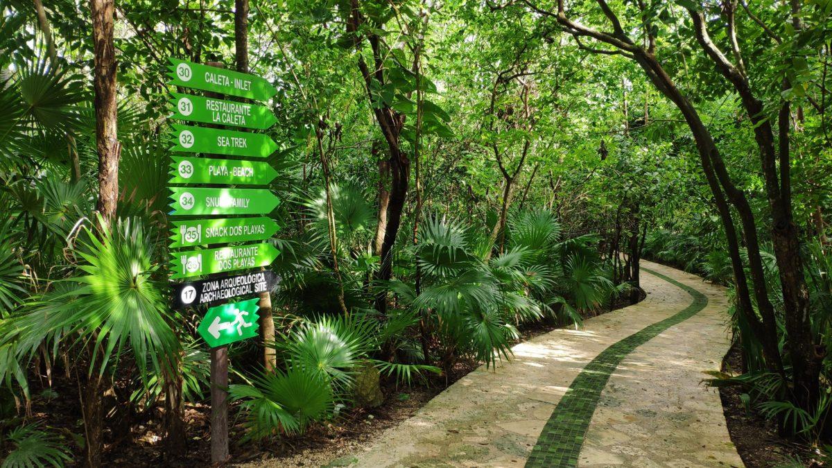 Ruta Verde en Xcaret