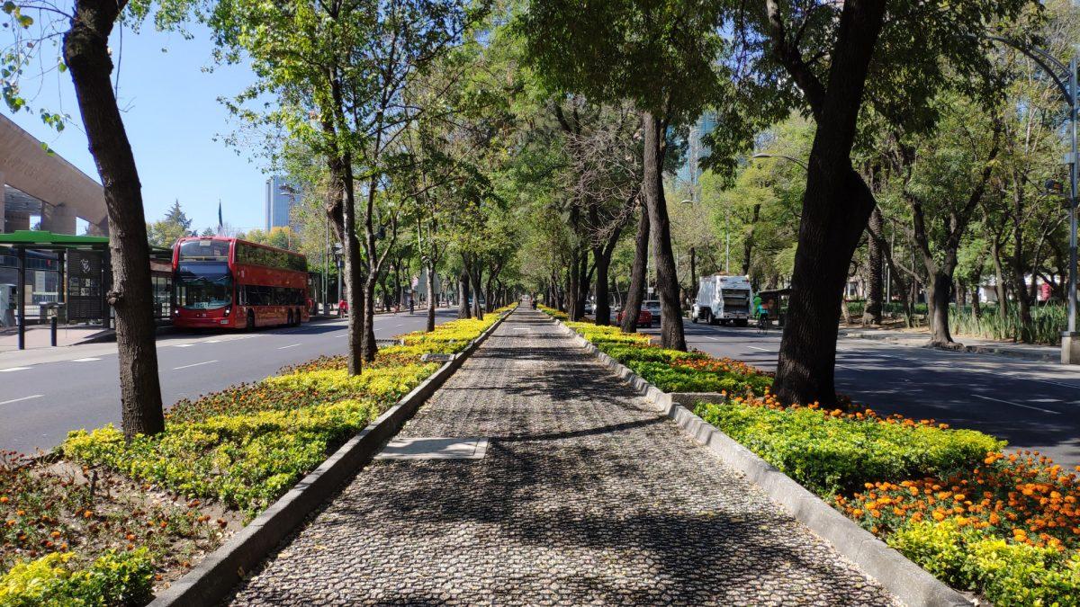 Paseo de la Reforma a la altura de Polanco